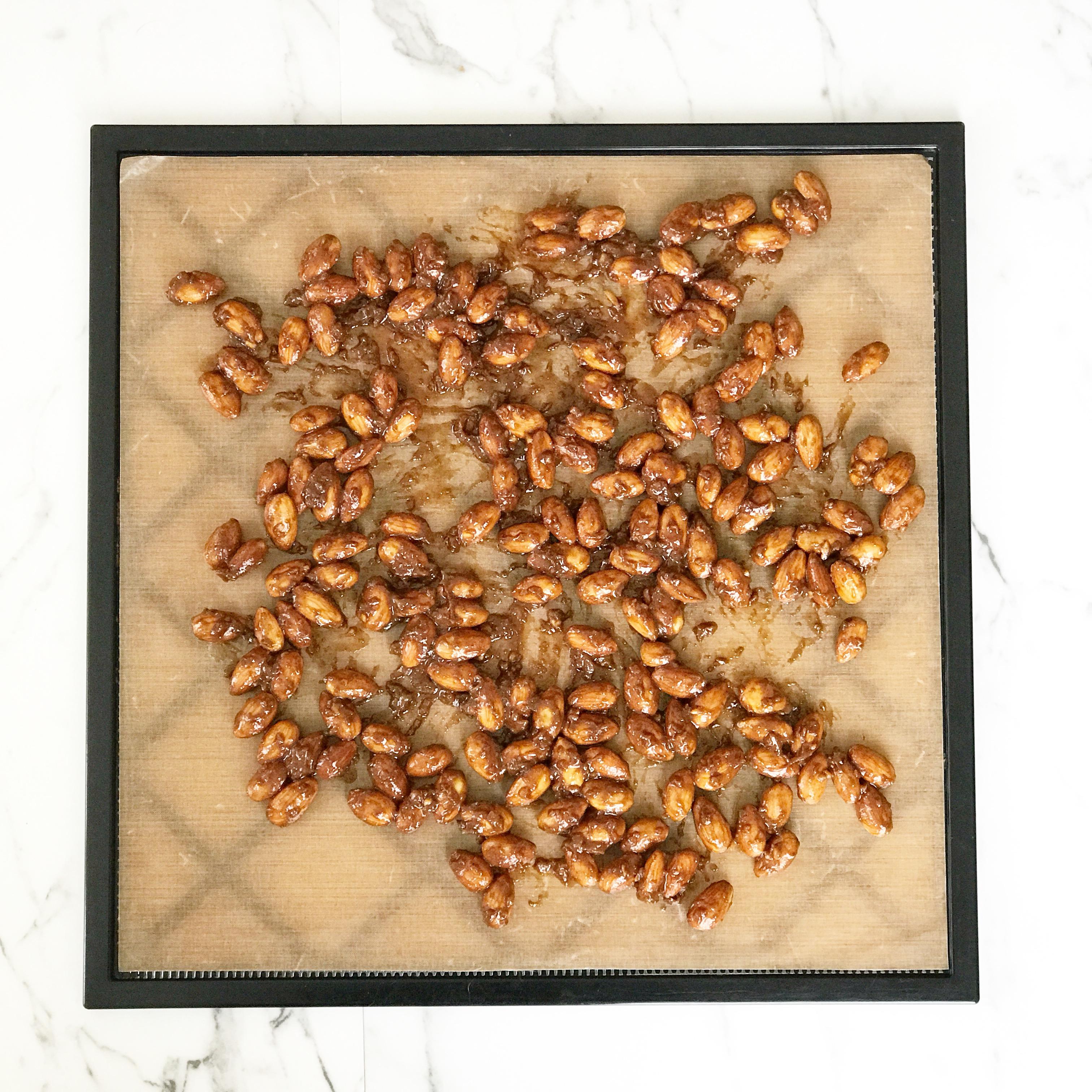tamari ginger almonds dehydrator